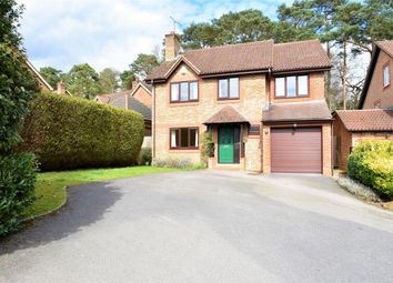 Thumbnail 4 bed detached house for sale in Knights Way, Camberley, Surrey
