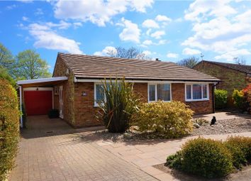Thumbnail 3 bed detached bungalow for sale in Bowes Road, Colchester