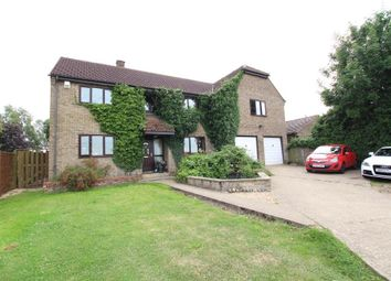 Thumbnail 5 bed detached house for sale in Main Street, Wardy Hill, Ely