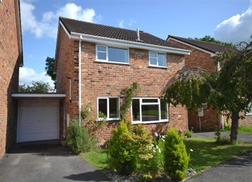 Thumbnail 3 bedroom link-detached house for sale in Kimber Close, Chineham, Basingstoke