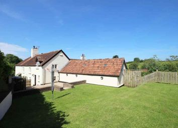 Thumbnail 4 bed semi-detached house for sale in Guineaford, Barnstaple