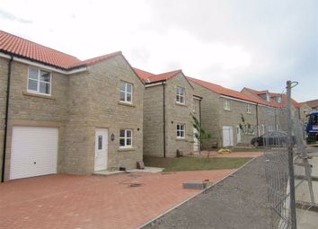 Thumbnail 4 bed detached house to rent in Cherry Tree Drive, Tweedmouth, Berwick-Upon-Tweed