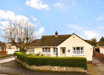 Thumbnail 4 bed detached bungalow for sale in 4 Bedroom Detached Bungalow, Beechwood Avenue, Barnstaple