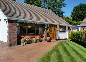 Thumbnail 3 bed bungalow for sale in St. Marys Close, Gravesend