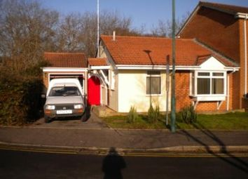 Thumbnail 2 bed bungalow to rent in Garsdale Close, Bear Cross, Bournemouth