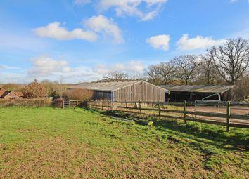 Thumbnail Land for sale in Romsey Road, Lockerley, Romsey