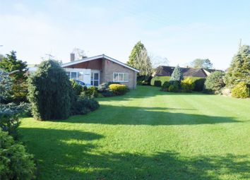 Thumbnail 3 bed detached bungalow for sale in The Street, Claxton