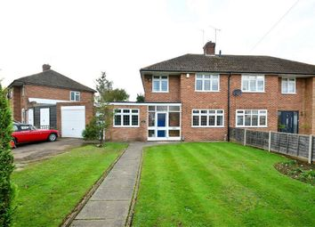 Thumbnail 3 bed semi-detached house for sale in Poplar Avenue, Hatfield, Hertfordshire