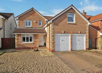 Thumbnail 5 bed detached house for sale in Burns Avenue, The Inches, Larbert