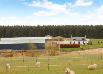 Thumbnail Farm for sale in Forglen, Turriff