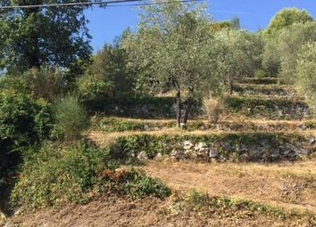 Thumbnail Land for sale in Le Broc, Provence-Alpes-Cote D'azur, 06510, France