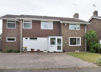 Thumbnail 4 bed detached house for sale in Roman Way, Chichester