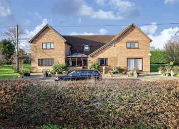 Thumbnail 5 bed detached house for sale in Great North Road, Chawston, Bedford, Bedfordshire