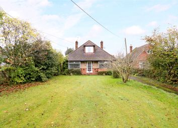 Thumbnail 2 bed detached bungalow for sale in Longmoor Road, Liphook, Hampshire