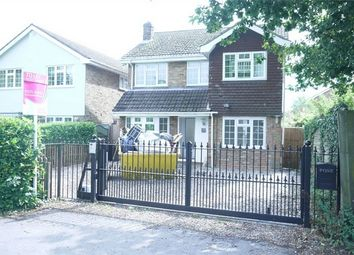 Thumbnail 4 bed detached house to rent in Hanging Hill Lane, Hutton, Brentwood, Essex