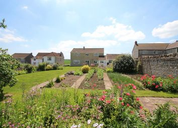 Thumbnail 4 bed detached house for sale in Jarmany Hill, Barton St. David, Somerton