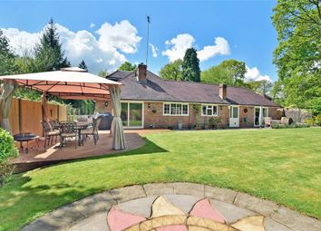Thumbnail 4 bed bungalow for sale in The Ride, Ifold, Billingshurst, West Sussex