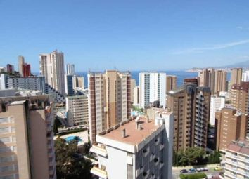 Thumbnail Studio for sale in Rincon De Loix, Benidorm, Spain