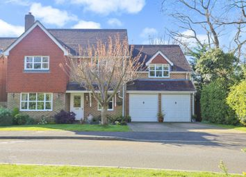 Thumbnail 5 bed detached house for sale in Grovebury, Locks Heath, Southampton