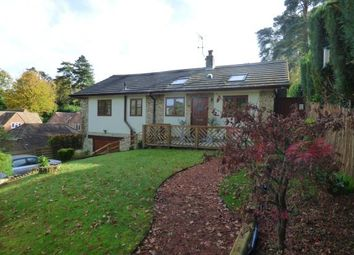 Thumbnail 4 bed bungalow for sale in Headley Down, Bordon, Hampshire
