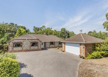 Hampers Lane, Storrington RH20. 4 bed detached bungalow
