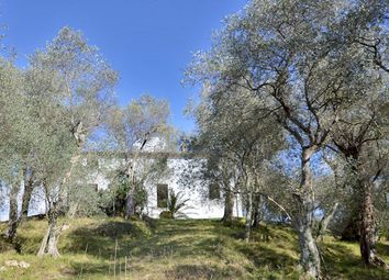 Thumbnail 7 bed farmhouse for sale in Camiore, Camaiore, Lucca, Tuscany, Italy