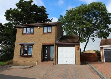 Thumbnail 3 bed detached house for sale in Woodburn, Tanfield Lea