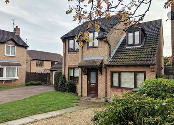 Thumbnail 4 bed detached house to rent in Little Meadow, Great Oakley, Corby, Northamptonshire