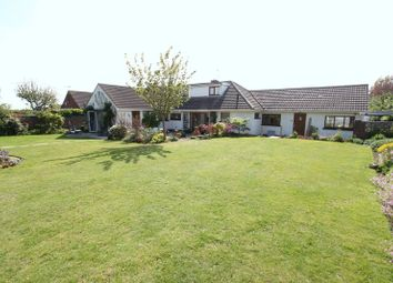 Thumbnail 4 bedroom semi-detached bungalow for sale in Wesley Avenue, Rhoose, Barry