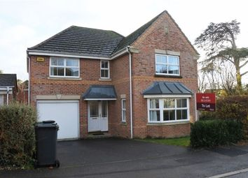 Thumbnail 4 bed detached house to rent in Basingfield Close, Old Basing, Basingstoke