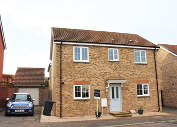 Thumbnail Detached house to rent in Quartly Drive, Bishops Hull, Taunton