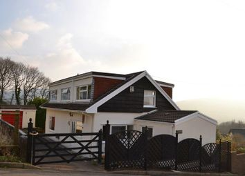 Thumbnail 4 bedroom detached house for sale in Waterloo Street, Cwmbach, Aberdare