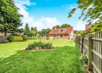 Thumbnail 4 bed bungalow for sale in Wroxham, Norwich, Norfolk
