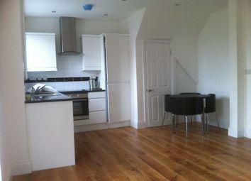 Thumbnail 2 bedroom flat to rent in Blenheim Gardens, Willesden