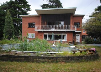 Thumbnail 4 bedroom detached house for sale in Links Drive, Chelmsford