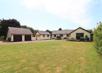 Thumbnail 4 bed detached bungalow for sale in Hadleigh Road, Calais Street, Boxford, Sudbury