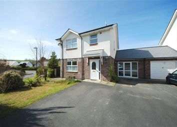 Thumbnail 4 bed link-detached house to rent in Paitholwg, Rhydyfelin, Aberystwyth