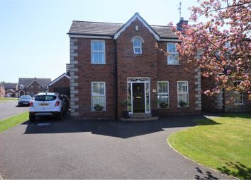 Thumbnail 4 bed detached house for sale in Glenbrae, Lisburn