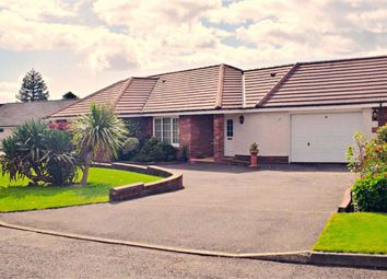 Thumbnail 4 bed detached bungalow for sale in Valleyfield Park, Terregles, Dumfries