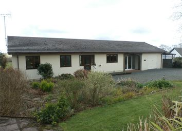 Thumbnail 3 bed detached bungalow for sale in Troedyrhiw, Cribyn, Lampeter, Ceredigion
