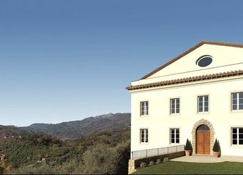 Thumbnail Country house for sale in Lucca, Tuscany, Italy