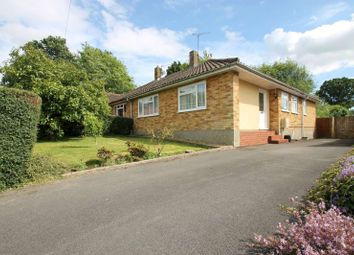 Thumbnail 2 bedroom bungalow to rent in Park Rise, Horsham