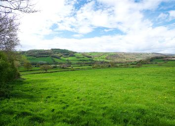 Thumbnail Land for sale in Northleigh, Colyton, Devon