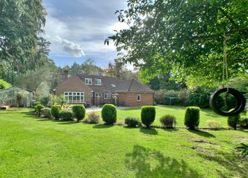 Thumbnail 4 bed detached bungalow to rent in Firbank Lane, Woking