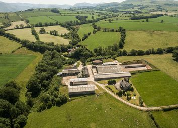 Thumbnail Farm for sale in Hesket Farm, Dacre, Penrith, Cumbria