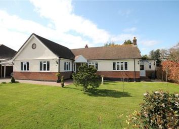 Thumbnail 4 bed detached bungalow for sale in Waterer Gardens, Tadworth
