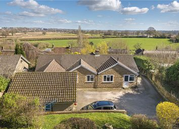 Thumbnail 4 bed detached bungalow for sale in Lower Odcombe, Yeovil, Somerset