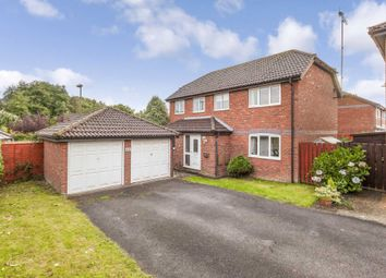 Thumbnail 4 bedroom detached house for sale in Bamborough Close, Southwater, Horsham