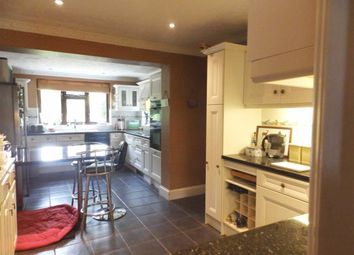 Thumbnail 5 bed detached house for sale in Felixstowe Road, Ipswich, Suffolk