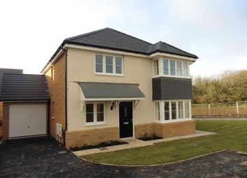 Thumbnail 4 bed detached house to rent in Curlew Road, Bude, Cornwall